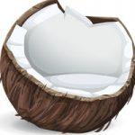 Huile de coco a des propriétés médicinales