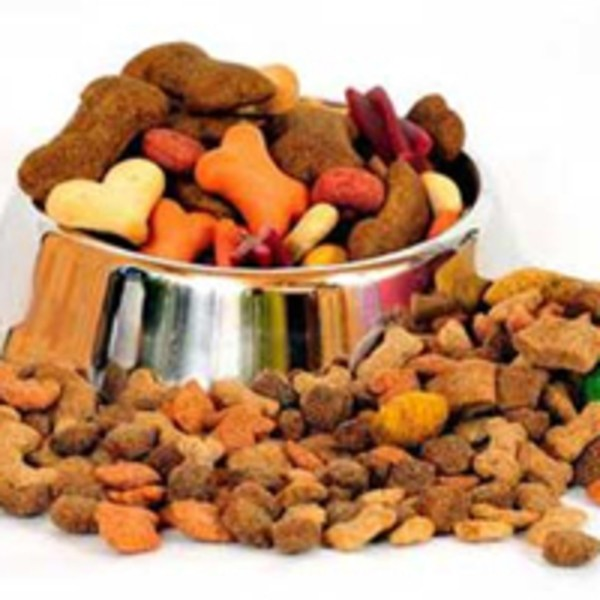 alimentation de chien
