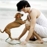 Conseils de base pour entraîner efficacement votre chien