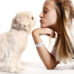 Conseils de dressage de chiens pour débutants